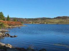 11-Loch-Ordie-121013.JPG