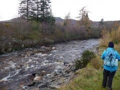37-River-Calder-Wildcat-Trail-151114.JPG